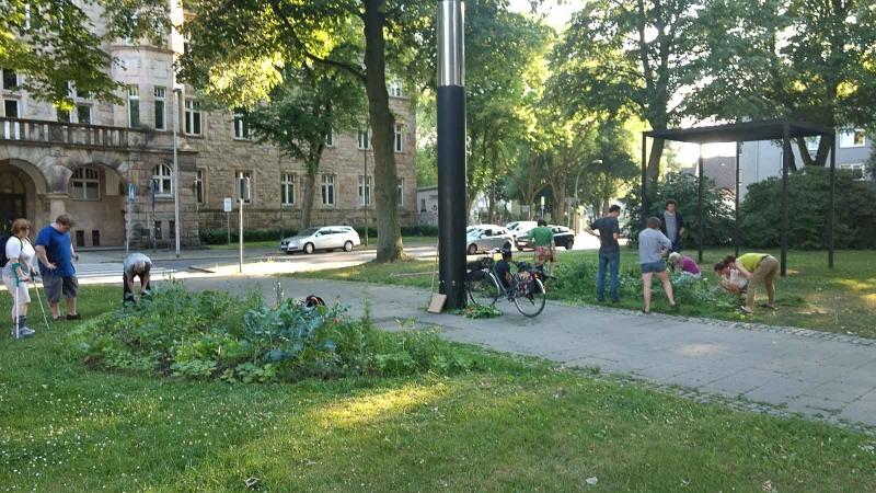 015 Erste Ernte Urban Gardening-IMG_20170619_193755962