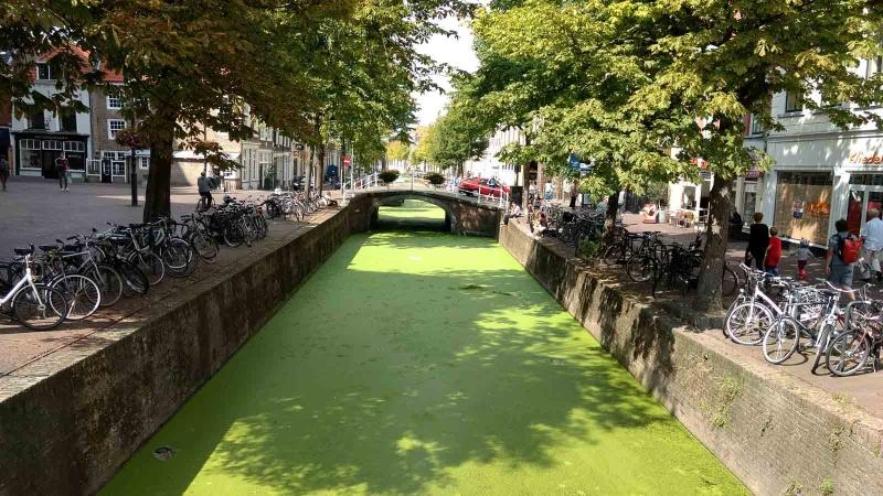 038 Holland 2017-IMG_20170814_150003060