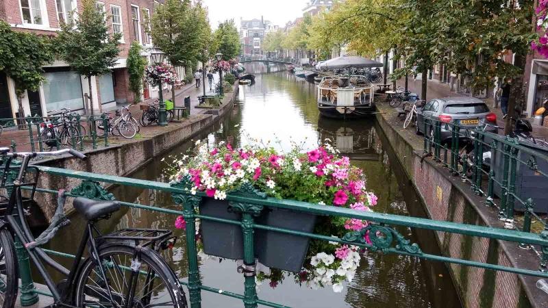 042 Holland 2017-IMG_20170817_143025597