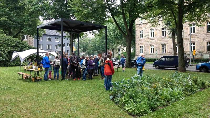 151 Urban Garden Party-IMG_20170702_142021070