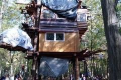 Baumhaus im Hambi